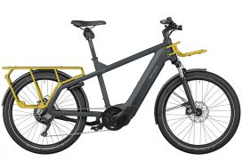 R&M Multicharger GT touring utility grey/curry matt